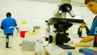 Renovación y nuevo equipamiento en el laboratorio del Hospital Falcón de Pilar