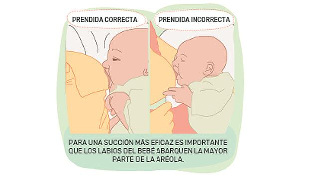 Afianzar la lactancia
